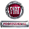 fiat_professional_small